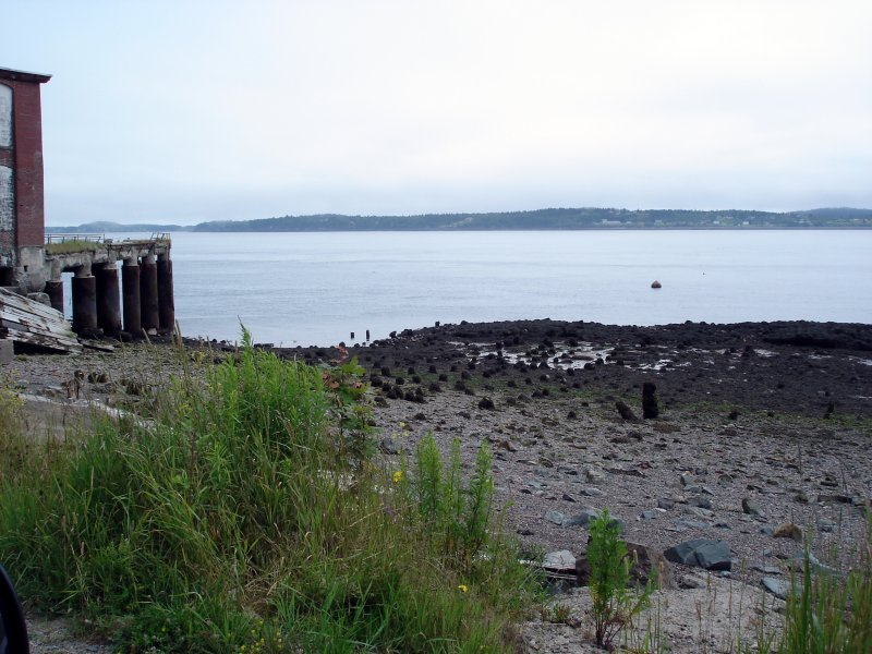 eastport-low-tide.jpg